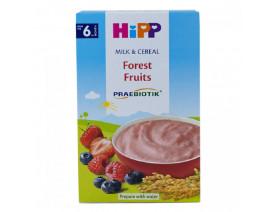 Hipp Milk Pap Forest Fruits - Case