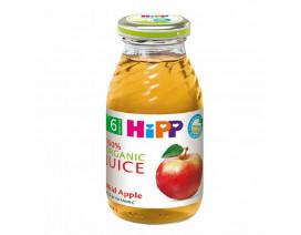 Hipp Organic Mild Apple Juice - Case