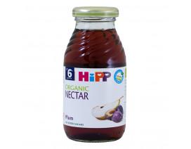 Hipp Organic Plum Nectar Juice - Case