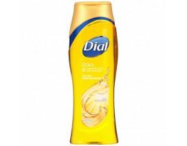 Dial Goldbody Wash (Usa) - Case