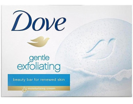 Dove Exfoliating Soap (Germany) - Case