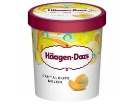 Haagen-Dazs Cantaloupe Melon Ice Cream - Case