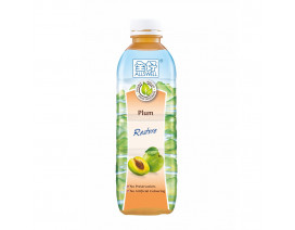 ALLSWELL WATER PLUM JUICE DRINK (LESS SUGAR) - CASE