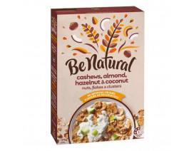Be Natural Cashew, Almond, Hazelnut & Coconut Cereal - Case