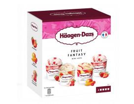 Haagen-Dazs Fruit Fantasy Ice Cream - Case