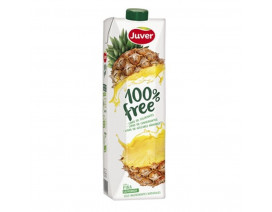 Juver 100% Freshly Squeezed Pineapple Juice - Case
