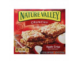 Nature Valley Granola Bar Crunchy Apple Crisp - Case