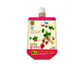 Nature Village Strawberry 100% Natural Fruit Juice - Case