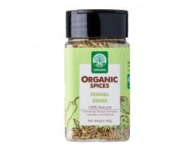 Origins Organic Fennel Seeds - Case