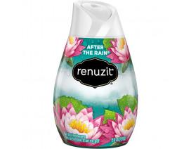 Renuzit Gel Air Freshener - After The Rain - Case
