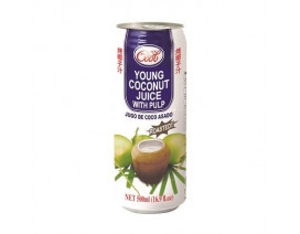 Ice Cool Roasted Young Coconut Juice with Pulp - Case
