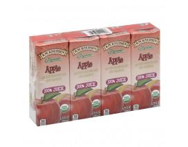 Knudsen Aseptic Organic Apple Juice - Case