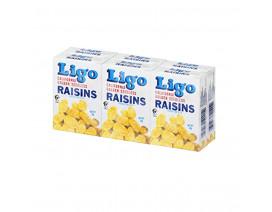 Ligo Raisin Golden - Case