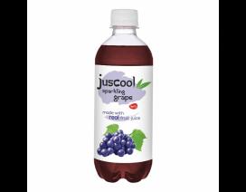 Juscool Grape Drink - Case